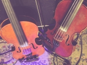 Twin Fiddles